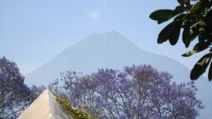 Carlos Guatemala Pics 031